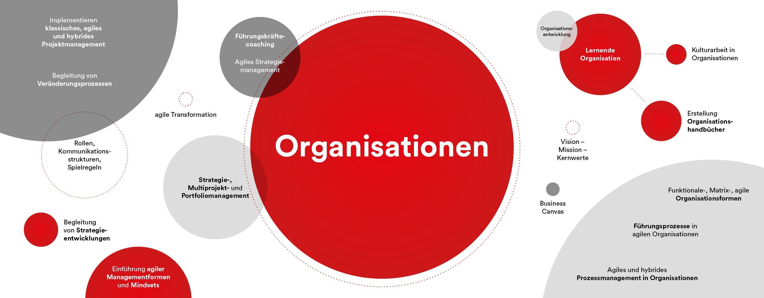 PMCC Management von Organisationen