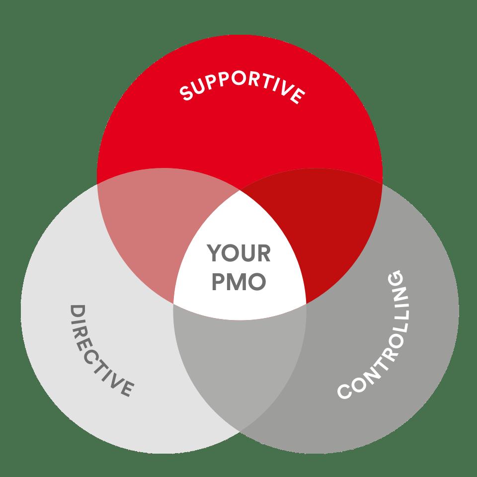PMCC-The three common types of PMOs